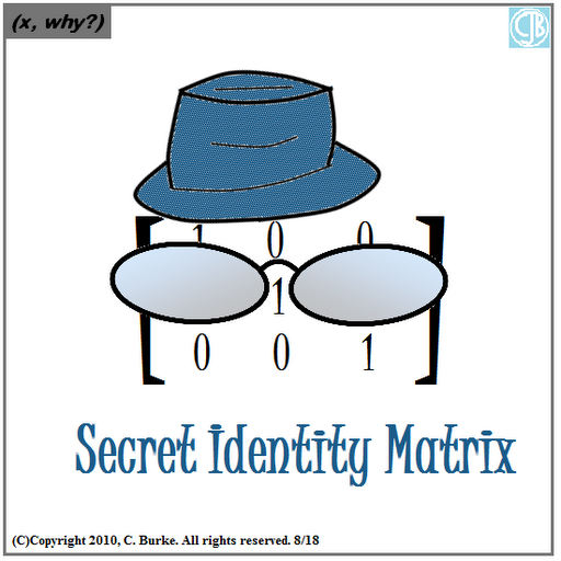 505 secret id matrix by chris burke x why 8-18-10